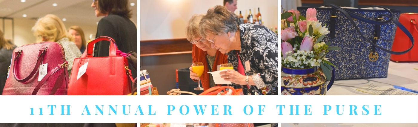 11th Annual Power of the Purse Banner