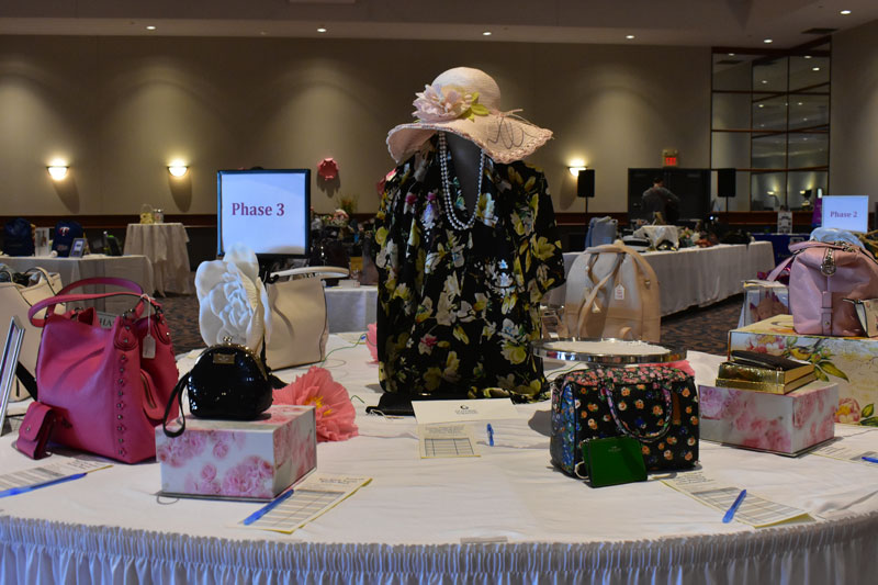 2019 Power of the Purse